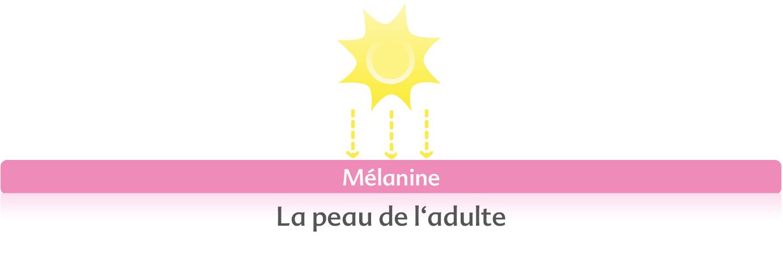 f1cfa0c20520f6 La mélanine est le pigment du couleur brune (qui colore brunit la peau) que  provoque le soleil sur la peau. Ces pigments absorbent1 la lumière et  protègent ...